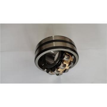 CONSOLIDATED BEARING 6007-ZZ C/3  Single Row Ball Bearings